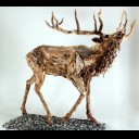 BAYING STAG