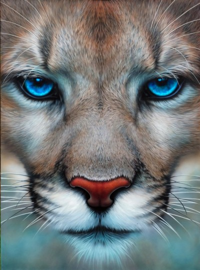 BLUE EYED MOUNTAIN LION